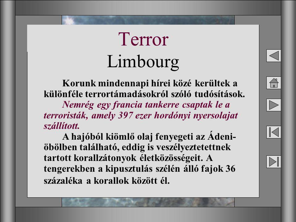 15 Terror Korunk mindennapi hírei közé kerültek a különféle terrortámadásokról szóló tudósítások. Nemrég egy francia tankerre csaptak le a terroristák