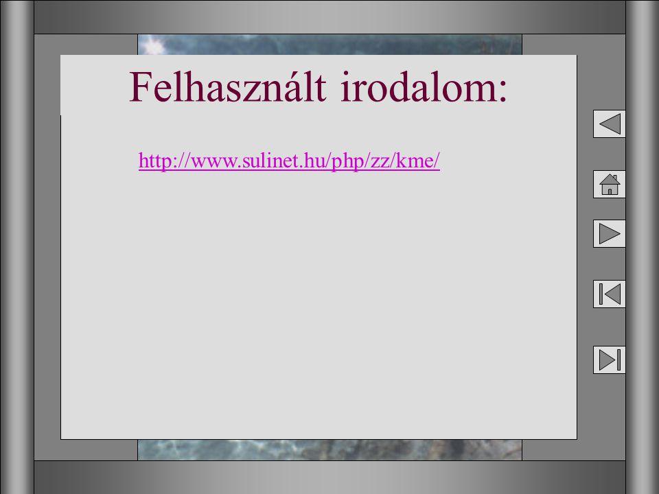 18 Felhasznált irodalom: http://www.sulinet.hu/php/zz/kme/