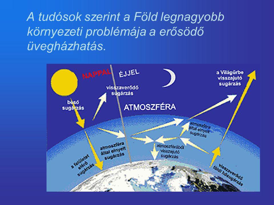 A globális felmelegedés fő okai •XIX.század közepe óta a légkörbe jutó üvegházhatást okozó gázok.
