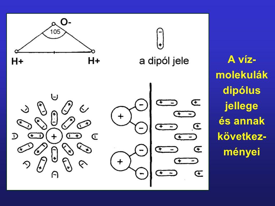 A víz- molekulák dipólus jellege és annak következ- ményei