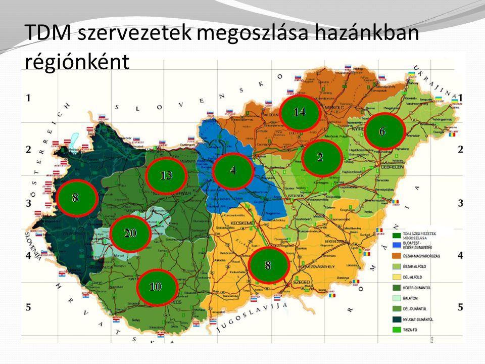 TDM helyzetkép 2013.I.
