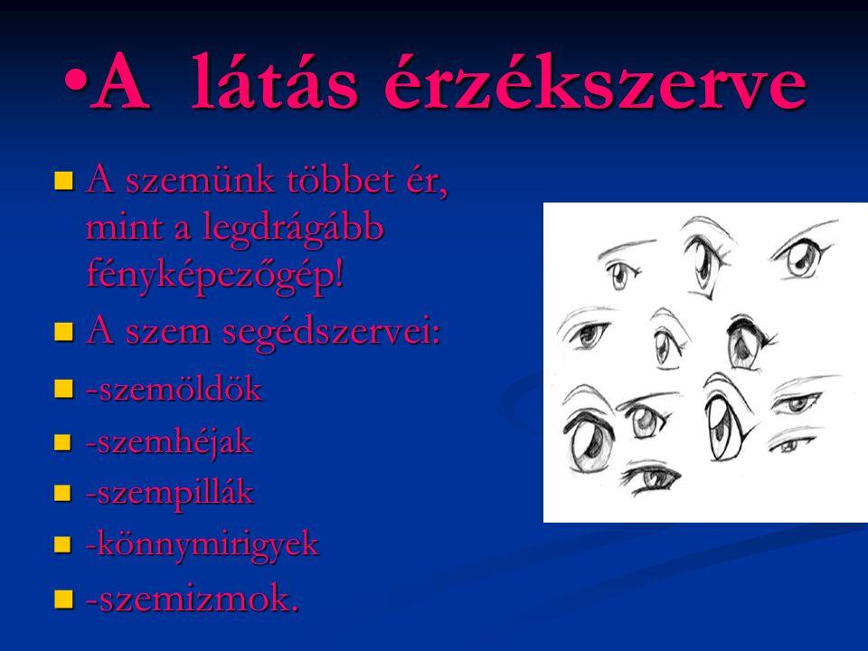 •A látás érzékszerve  A szemünk többet ér, mint a legdrágább fényképezőgép!  A szem segédszervei:  - szemöldök  -szemhéjak  -szempillák  -könnym