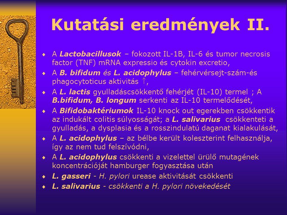 Kutatási eredmények II.