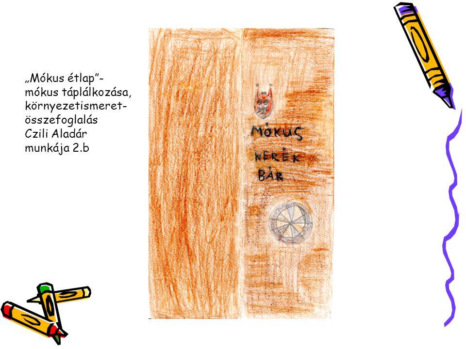 """""""Mókus étlap""""- mókus táplálkozása, környezetismeret- összefoglalás Czili Aladár munkája 2.b"""