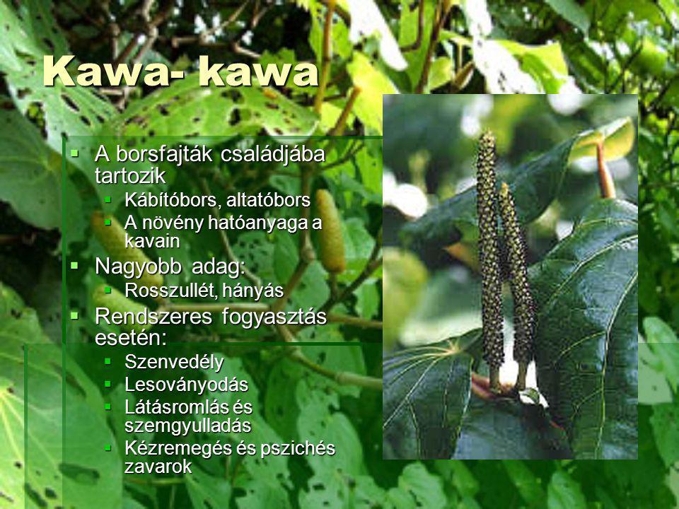 Kawa- kawa  A borsfajták családjába tartozik  Kábítóbors, altatóbors  A növény hatóanyaga a kavain  Nagyobb adag:  Rosszullét, hányás  Rendszere