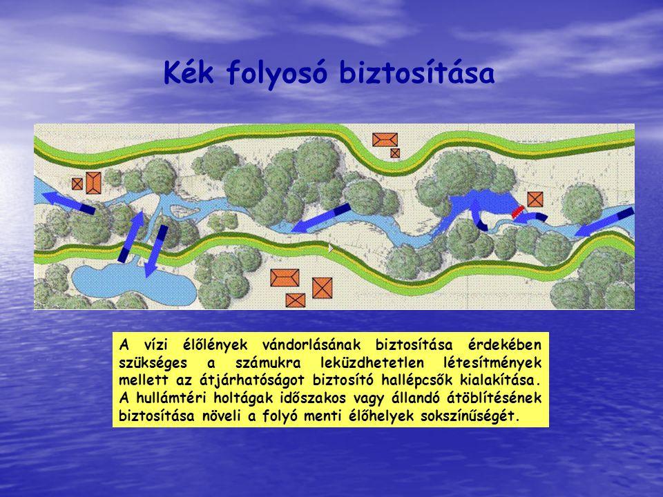 Kék folyosó biztosítása A vízi élőlények vándorlásának biztosítása érdekében szükséges a számukra leküzdhetetlen létesítmények mellett az átjárhatóság