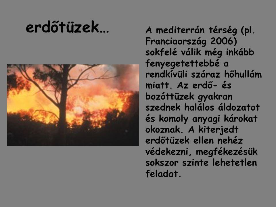erdőtüzek… A mediterrán térség (pl. Franciaország 2006) sokfelé válik még inkább fenyegetettebbé a rendkívüli száraz hőhullám miatt. Az erdő- és bozót