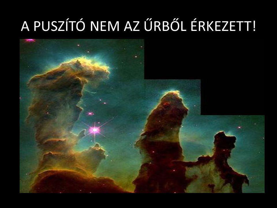 A PUSZTÍTÓ Radics József – DKKI - Darány 2008.