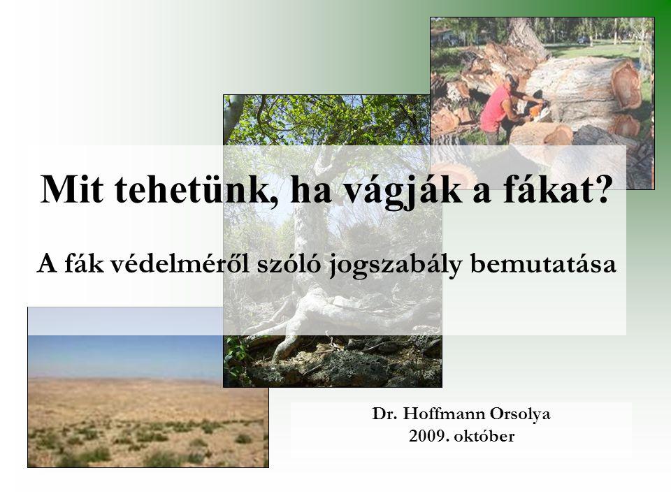 Mit tehetünk, ha vágják a fákat? A fák védelméről szóló jogszabály bemutatása Dr. Hoffmann Orsolya 2009. október