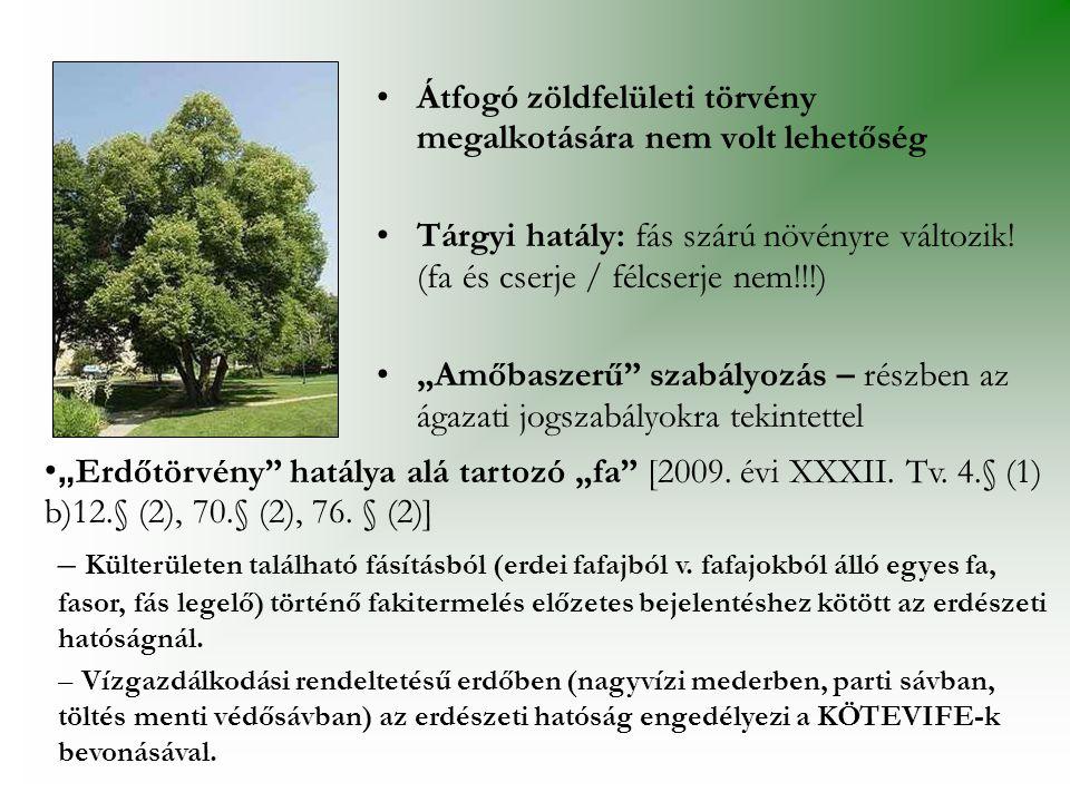 •Átfogó zöldfelületi törvény megalkotására nem volt lehetőség •Tárgyi hatály: fás szárú növényre változik.