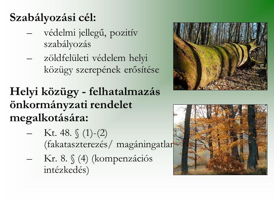 Szabályozási cél: –védelmi jellegű, pozitív szabályozás –zöldfelületi védelem helyi közügy szerepének erősítése Helyi közügy - felhatalmazás önkormány
