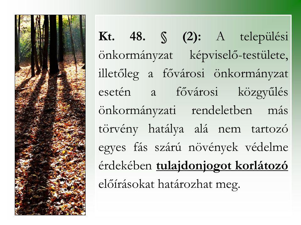 Kt. 48. § (2): A települési önkormányzat képviselő-testülete, illetőleg a fővárosi önkormányzat esetén a fővárosi közgyűlés önkormányzati rendeletben
