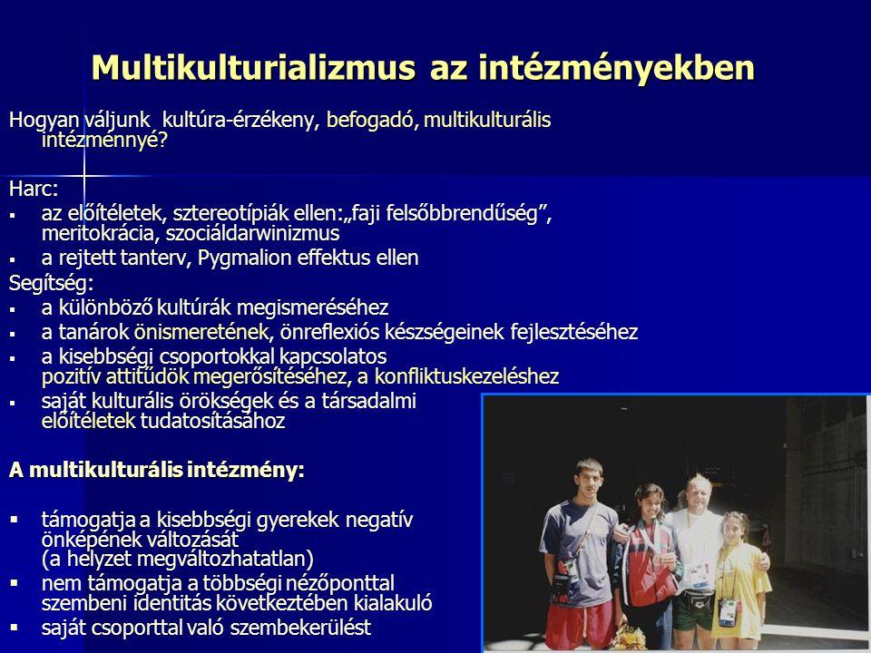 Multikulturializmus az intézményekben Hogyan váljunk kultúra-érzékeny, befogadó, multikulturális intézménnyé? Harc:   az előítéletek, sztereotípiák