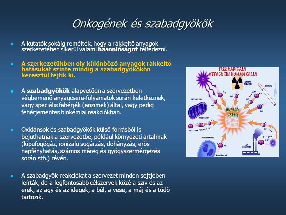 A HIV vírus szaporodása