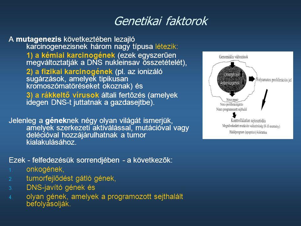 2004-es felmérés A tumor kialakulásában szerepet játszó gének   291 tumor gént azonosítottak, ez több mint 1 %-a a teljes genomnak.   Ezek 90 %-a