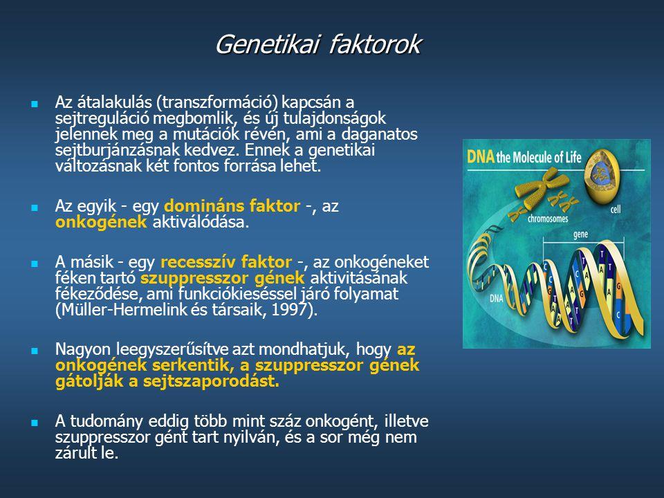 Genetikai faktorok A mutagenezis következtében lezajló karcinogenezisnek három nagy típusa létezik: 1) a kémiai karcinogének (ezek egyszerűen megválto