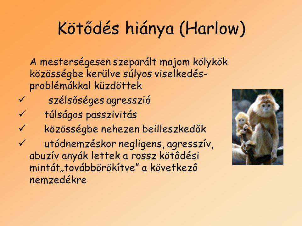Kötődés hiánya (Harlow) A mesterségesen szeparált majom kölykök közösségbe kerülve súlyos viselkedés- problémákkal küzdöttek  szélsőséges agresszió 