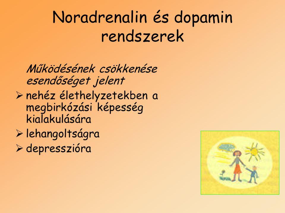Noradrenalin és dopamin rendszerek Működésének csökkenése esendőséget jelent  nehéz élethelyzetekben a megbirkózási képesség kialakulására  lehangol