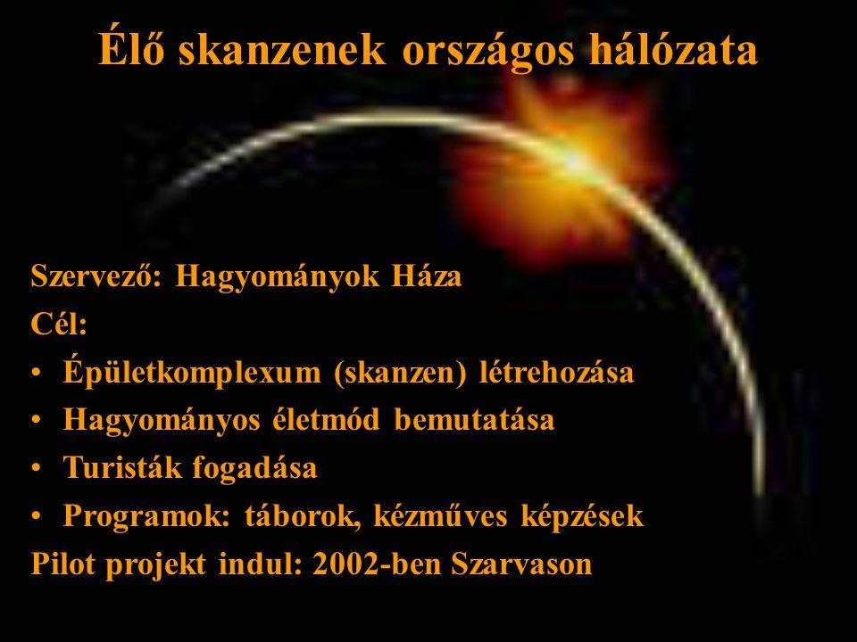 Élő skanzenek országos hálózata Szervező: Hagyományok Háza Cél: •Épületkomplexum (skanzen) létrehozása •Hagyományos életmód bemutatása •Turisták fogadása •Programok: táborok, kézműves képzések Pilot projekt indul: 2002-ben Szarvason