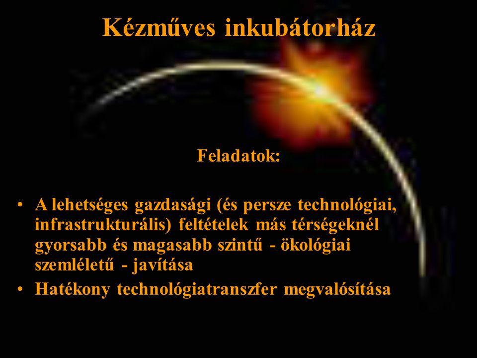Kézműves inkubátorház Feladatok: •A lehetséges gazdasági (és persze technológiai, infrastrukturális) feltételek más térségeknél gyorsabb és magasabb szintű - ökológiai szemléletű - javítása •Hatékony technológiatranszfer megvalósítása