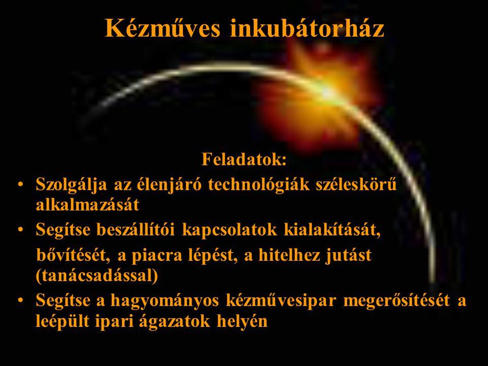 Feladatok: •Szolgálja az élenjáró technológiák széleskörű alkalmazását •Segítse beszállítói kapcsolatok kialakítását, bővítését, a piacra lépést, a hitelhez jutást (tanácsadással) •Segítse a hagyományos kézművesipar megerősítését a leépült ipari ágazatok helyén Kézműves inkubátorház