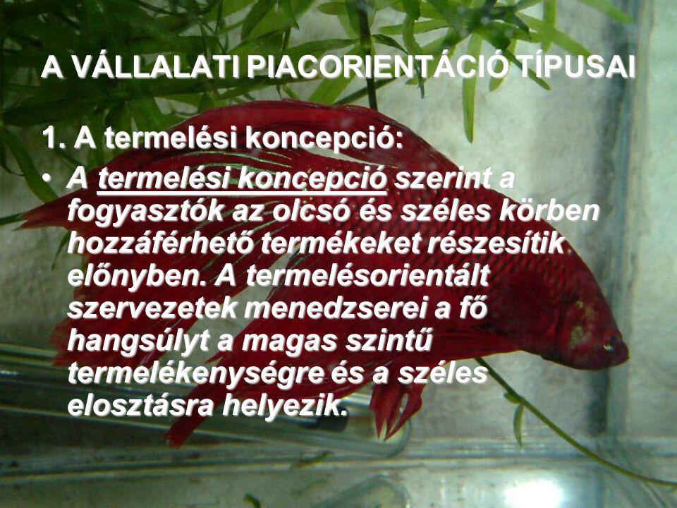 A VÁLLALATI PIACORIENTÁCIÓ TÍPUSAI 1.