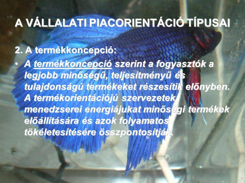 A VÁLLALATI PIACORIENTÁCIÓ TÍPUSAI 2.