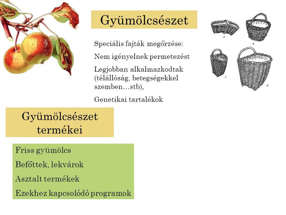 Gyümölcsészet Speciális fajták megőrzése: Nem igényelnek permetezést Legjobban alkalmazkodtak (télállóság, betegségekkel szemben…stb), Genetikai tarta
