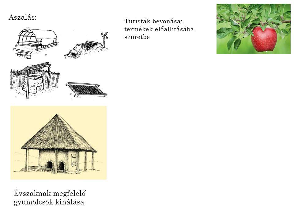 Aszalás: Évszaknak megfelelő gyümölcsök kínálása Turisták bevonása: termékek előállításába szüretbe