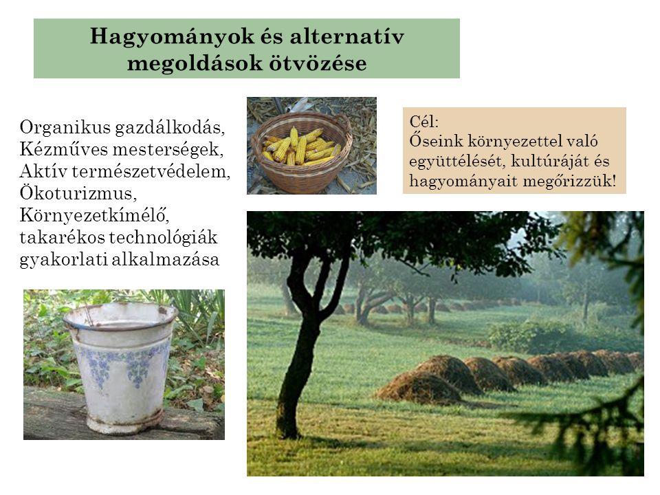 Hagyományok és alternatív megoldások ötvözése Organikus gazdálkodás, Kézműves mesterségek, Aktív természetvédelem, Ökoturizmus, Környezetkímélő, takar