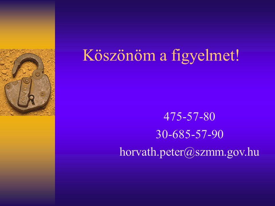 Köszönöm a figyelmet! 475-57-80 30-685-57-90 horvath.peter@szmm.gov.hu