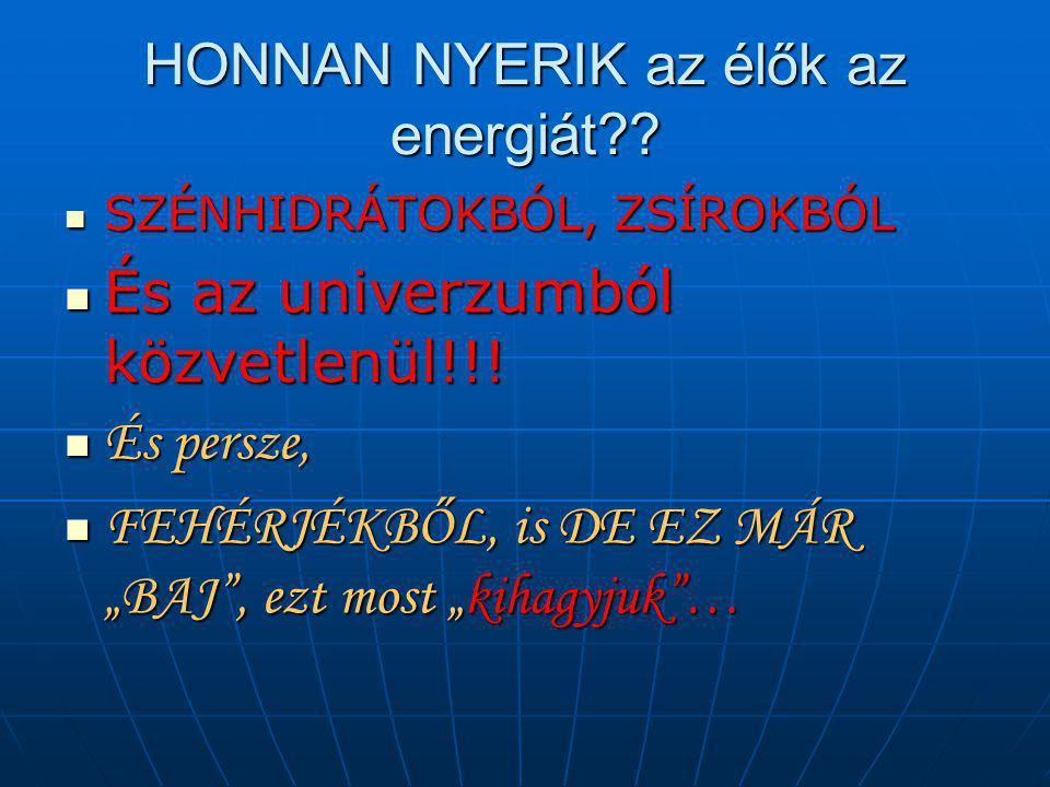 """HONNAN NYERIK az élők az energiát??  SZÉNHIDRÁTOKBÓL, ZSÍROKBÓL  És az univerzumból közvetlenül!!!  És persze,  FEHÉRJÉKBŐL, is DE EZ MÁR """"BAJ"""", e"""