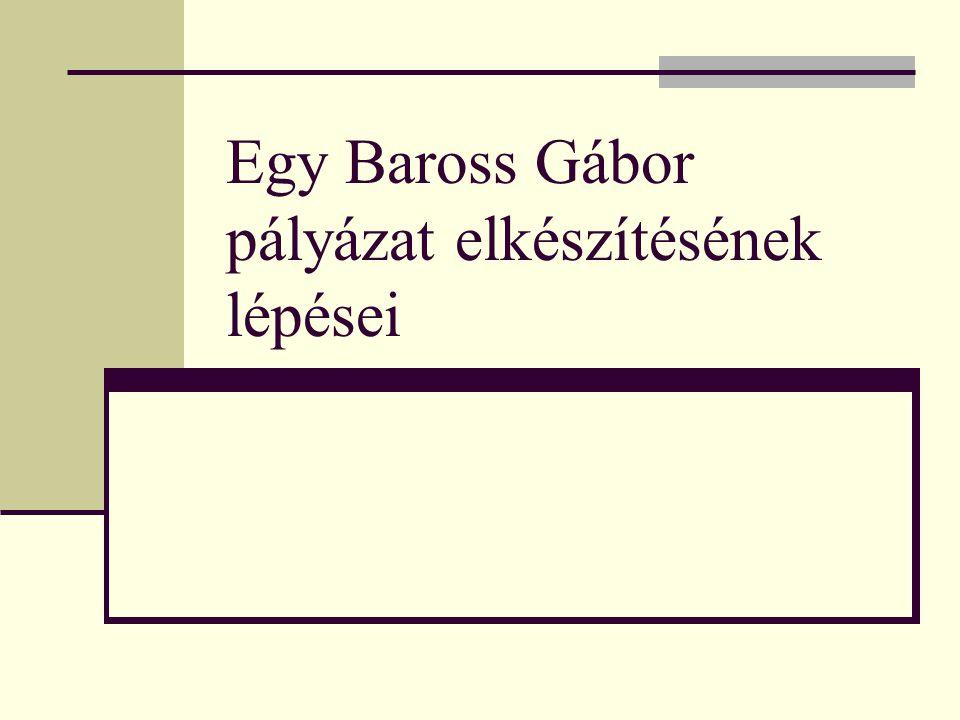 Egy Baross Gábor pályázat elkészítésének lépései