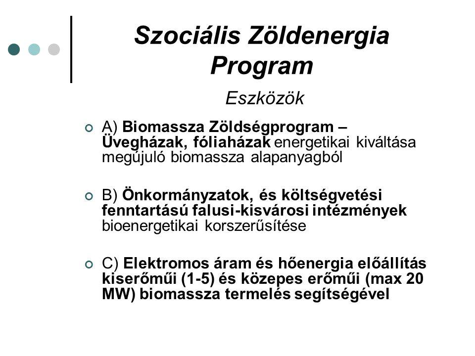 Szociális Zöldenergia Program Eszközök A) Biomassza Zöldségprogram – Üvegházak, fóliaházak energetikai kiváltása megújuló biomassza alapanyagból B) Önkormányzatok, és költségvetési fenntartású falusi-kisvárosi intézmények bioenergetikai korszerűsítése C) Elektromos áram és hőenergia előállítás kiserőműi (1-5) és közepes erőműi (max 20 MW) biomassza termelés segítségével