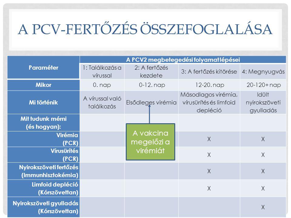 A PCV-FERTŐZÉS ÖSSZEFOGLALÁSA Paraméter A PCV2 megbetegedési folyamat lépései 1: Találkozás a vírussal 2: A fertőzés kezdete 3: A fertőzés kitörése4: