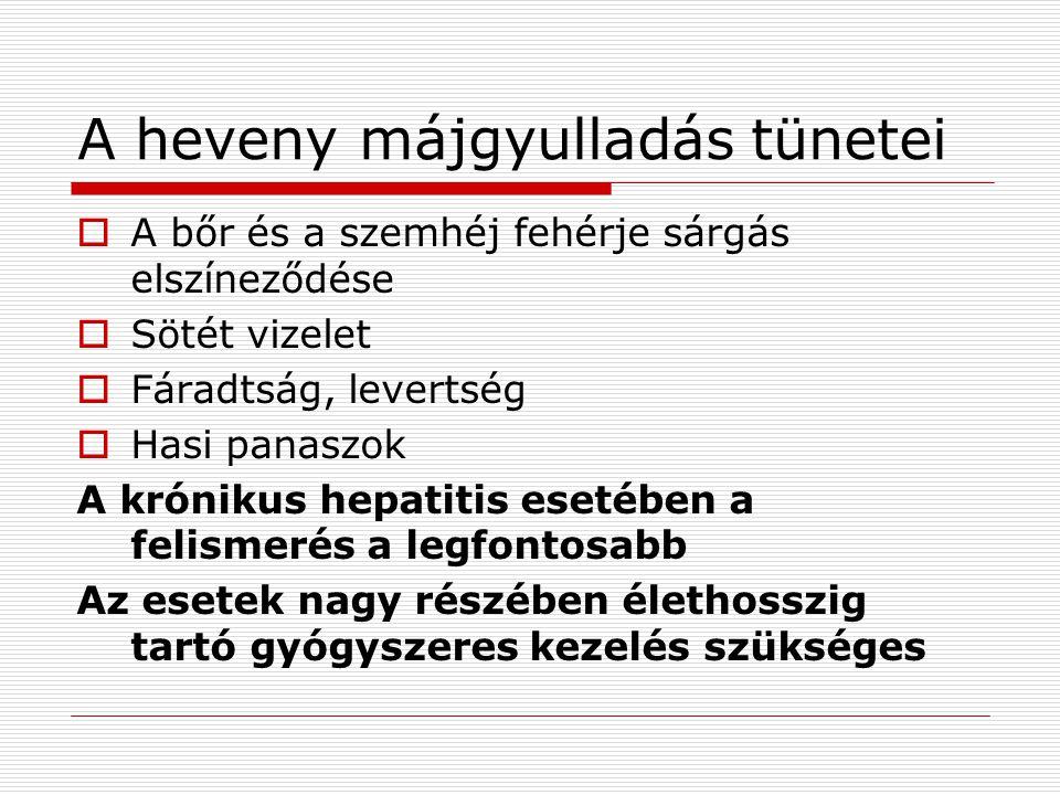 A heveny májgyulladás tünetei  A bőr és a szemhéj fehérje sárgás elszíneződése  Sötét vizelet  Fáradtság, levertség  Hasi panaszok A krónikus hepatitis esetében a felismerés a legfontosabb Az esetek nagy részében élethosszig tartó gyógyszeres kezelés szükséges
