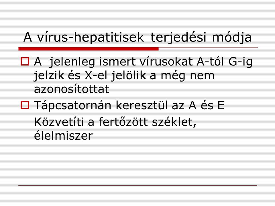 A vírus-hepatitisek terjedési módja  A jelenleg ismert vírusokat A-tól G-ig jelzik és X-el jelölik a még nem azonosítottat  Tápcsatornán keresztül az A és E Közvetíti a fertőzött széklet, élelmiszer