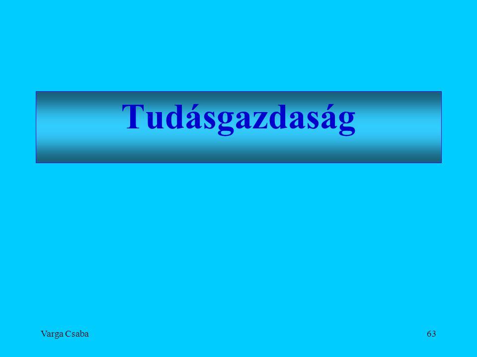 Varga Csaba63 Tudásgazdaság