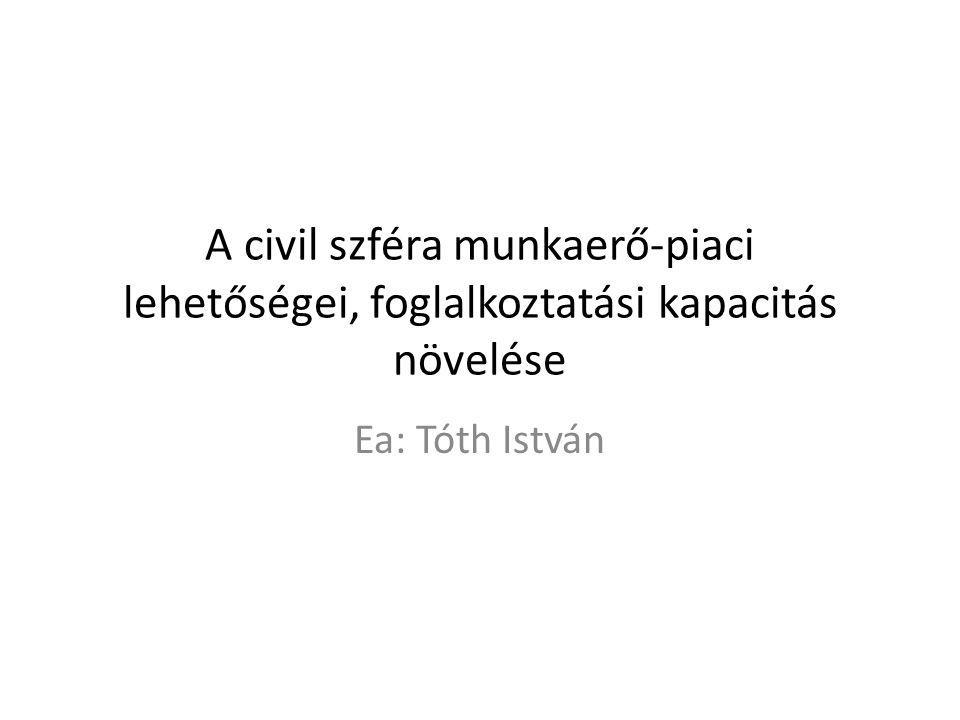 A civil szféra munkaerő-piaci lehetőségei, foglalkoztatási kapacitás növelése Ea: Tóth István