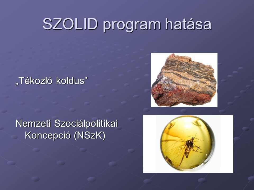 """SZOLID program hatása """"Tékozló koldus Nemzeti Szociálpolitikai Koncepció (NSzK)"""