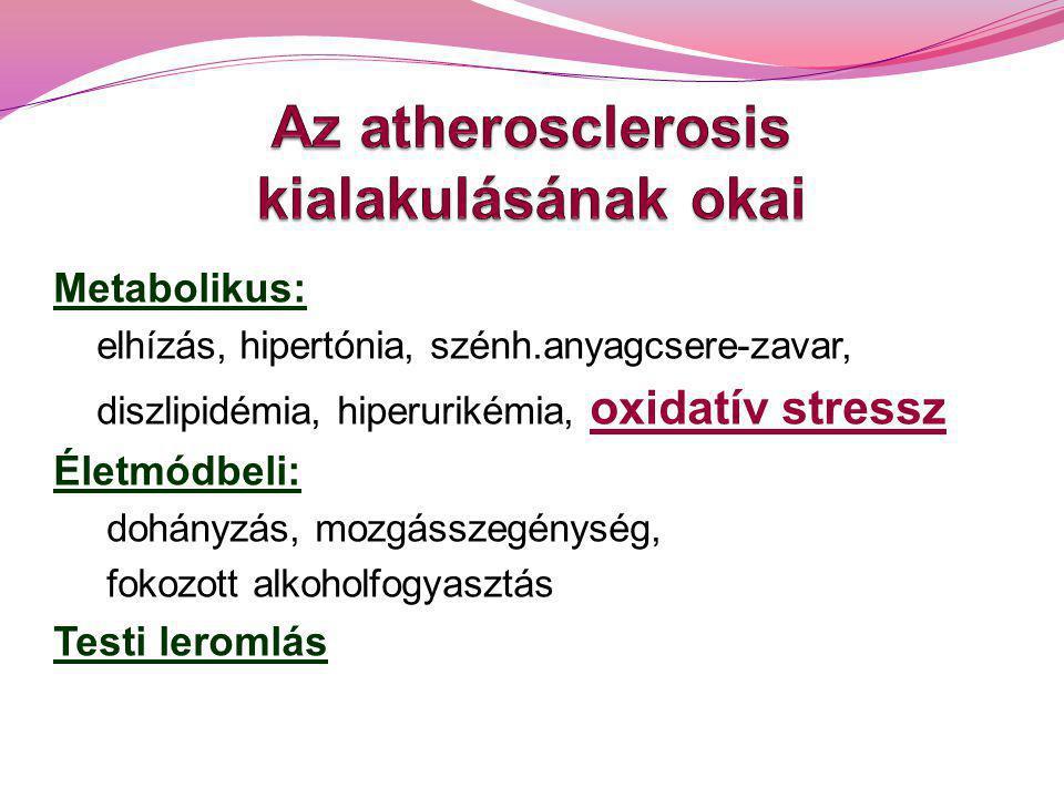 Oxidatív stressz Károsítja a fehérjéket, a nukleinsavakat, a lipidmembránokat.