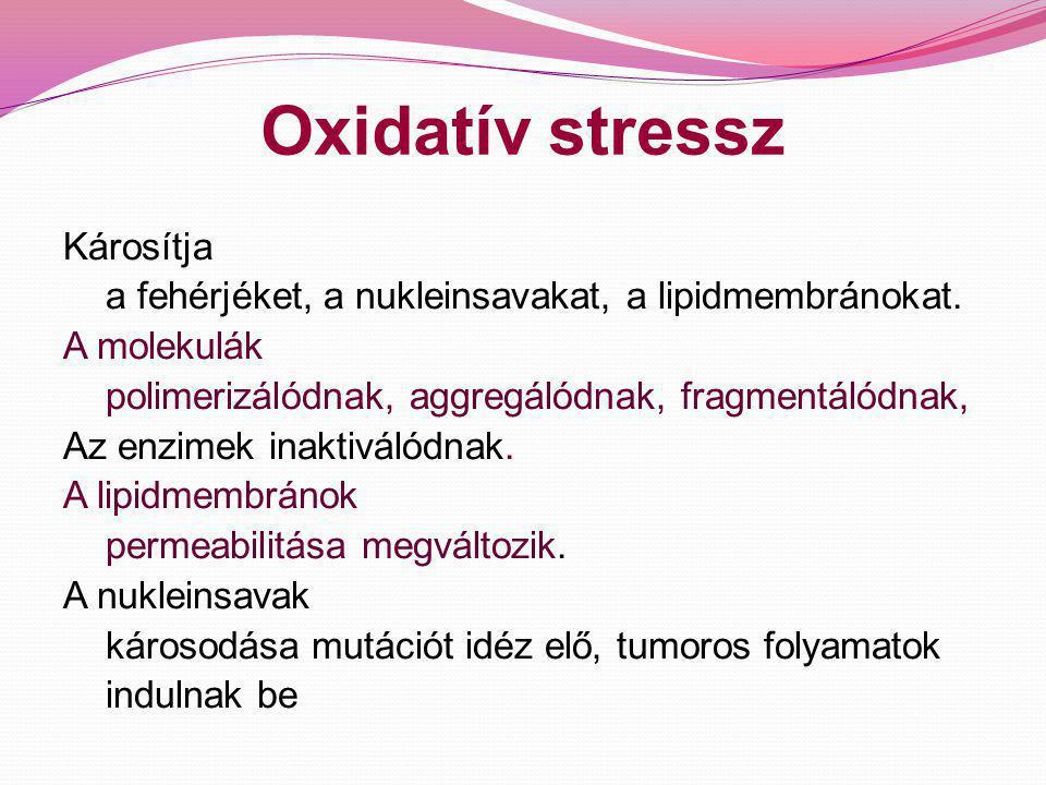 Oxidatív stressz Szerepe van: - az öregedés folyamatában - több krónikus megbetegedés patomechanizmusában Pl: érelmeszesedés rosszindulatú daganatok krónikus gyulladásos folyamatok toxikus sejtkárosodás