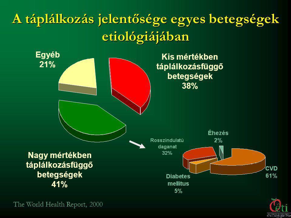 Leggyakoribb halálokok (%) (2004) Forrás: WHO 2006.