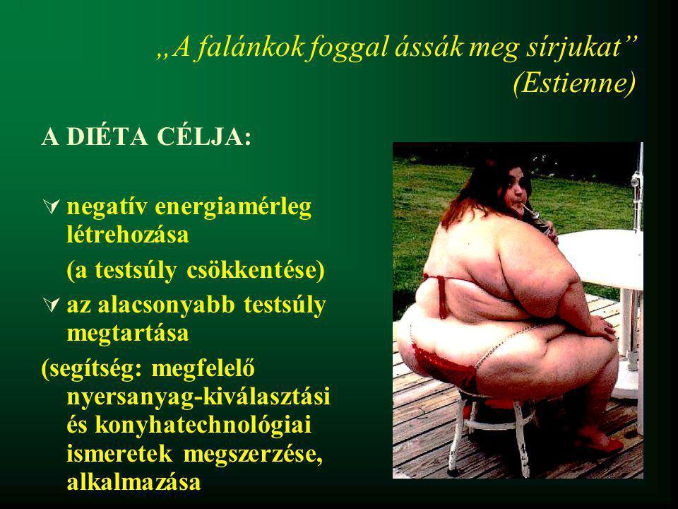 A diétával szemben támasztott követelmények - A test zsírtartalmának csökkenésével együtt ne csökkenjen a zsírmentes testtömeg - A testtömeg csökkenése ne járjon együtt anyagcsere zavar kialakulásával - A diéta mellett ne jelentkezzen éhségérzet - Biztosítsa a megfelelő tápanyag-ellátást