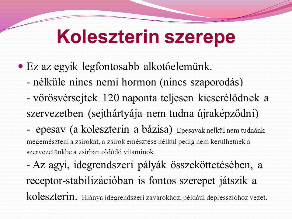 Koleszterin szerepe  Ez az egyik legfontosabb alkotóelemünk. - nélküle nincs nemi hormon (nincs szaporodás) - vörösvérsejtek 120 naponta teljesen kic