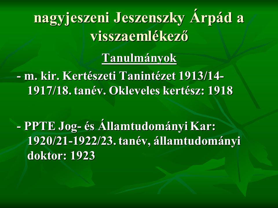 nagyjeszeni Jeszenszky Árpád a visszaemlékező - 1919.