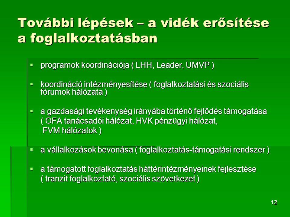 12 További lépések – a vidék erősítése a foglalkoztatásban  programok koordinációja ( LHH, Leader, UMVP )  koordináció intézményesítése ( foglalkoztatási és szociális fórumok hálózata )  a gazdasági tevékenység irányába történő fejlődés támogatása ( OFA tanácsadói hálózat, HVK pénzügyi hálózat, FVM hálózatok ) FVM hálózatok )  a vállalkozások bevonása ( foglalkoztatás-támogatási rendszer )  a támogatott foglalkoztatás háttérintézményeinek fejlesztése ( tranzit foglalkoztató, szociális szövetkezet )