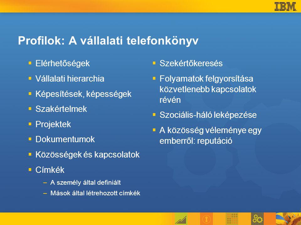 Profilok: A vállalati telefonkönyv   Elérhetőségek   Vállalati hierarchia   Képesítések, képességek   Szakértelmek   Projektek   Dokumentumok   Közösségek és kapcsolatok   Címkék – –A személy által definiált – –Mások által létrehozott címkék   Szekértőkeresés   Folyamatok felgyorsítása közvetlenebb kapcsolatok révén   Szociális-háló leképezése   A közösség véleménye egy emberről: reputáció
