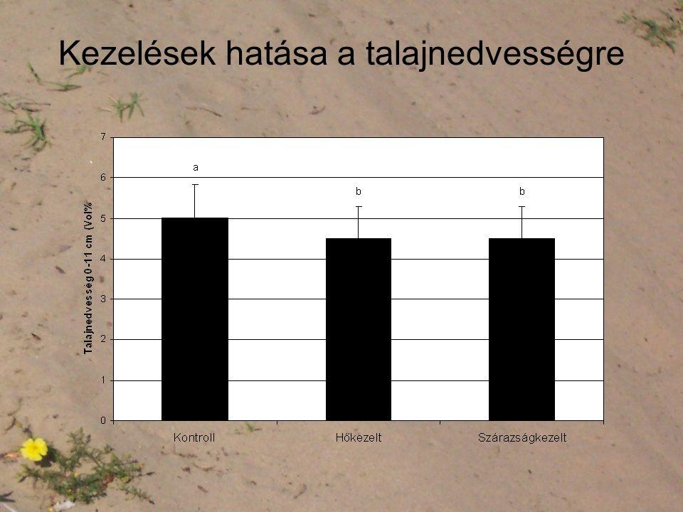 Kezelések hatása a talajnedvességre