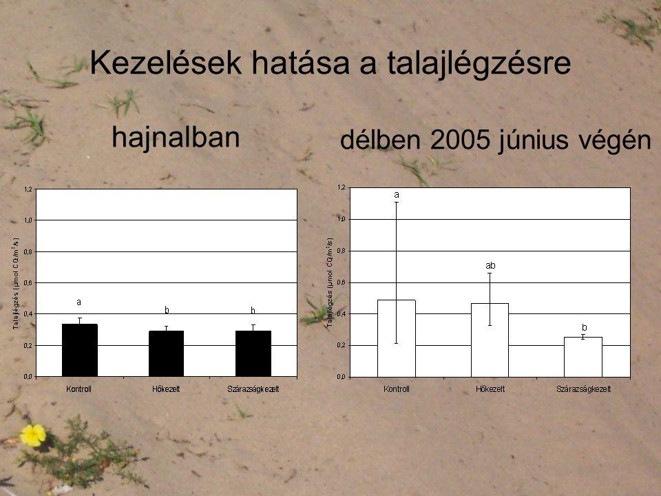 Kezelések hatása a talajlégzésre hajnalban délben 2005 június végén